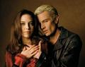 Spike and Drusilla - spike photo