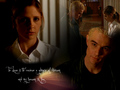 Spuffy - bangel-vs-spuffy wallpaper