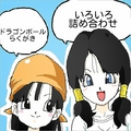 Teen Videl and Teen Pan - dragon-ball-females fan art