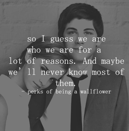 Image result for perks of being a wallflower quotes