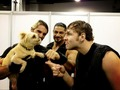 The Shield at Wizard World - the-shield-wwe photo