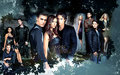 The Vampire Diaries - the-vampire-diaries-actors fan art