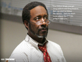 Lester Freamon - the-wire wallpaper