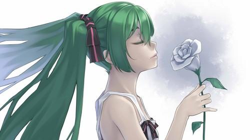 Vocaloid \(*3*)/