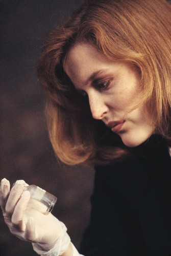 Gillian Anderson wolpeyper titled X-Files