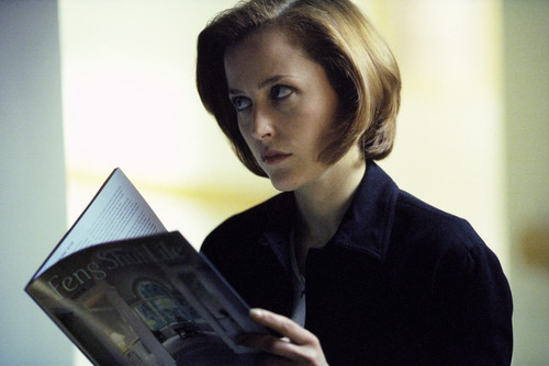 X-Files