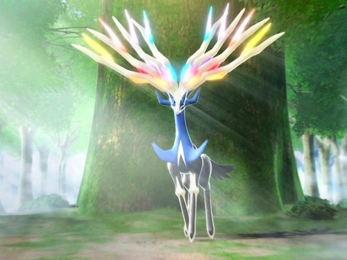 Pokémon wallpaper with a bouquet and a hippeastrum called Xerneas