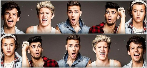 one direction 2013
