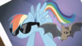 rainbow dash and the bat