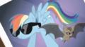 rainbow dash and the bat