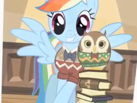 彩虹 dash and the owl