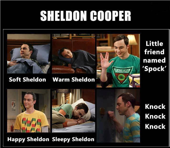 May The 4th Be With You Sheldon Cooper: Soft Kitty Sheldon Cooper Quotes. QuotesGram