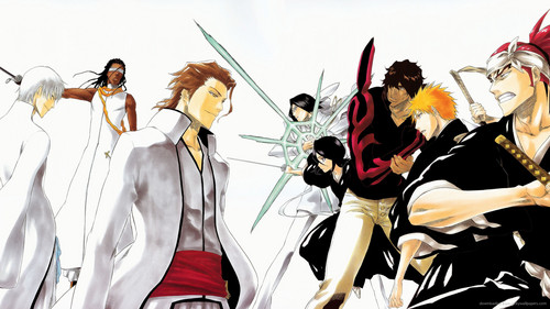 Bleach Anime wallpaper entitled *Bleach*