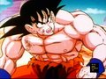 *DBZ* - dragon-ball-z wallpaper