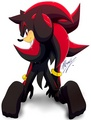 .:Shadow:. - shadow-the-hedgehog photo
