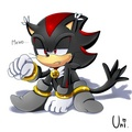 .:Shadow the Hedge-Cat:. - shadow-the-hedgehog photo