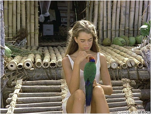 "Brooke Shields wallpaper probably with a leotard, a maillot, and tights called ""The Blue Lagoon"" - 1980"