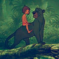 ★ The Jungle Book ☆