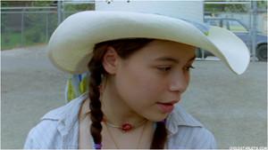 """The Wild Stallion"" - 2008"