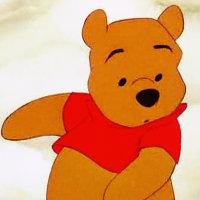 Winnie the pooh winnie the pooh icon 35378384 fanpop