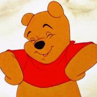 Winnie the pooh winnie the pooh icon 35378388 fanpop