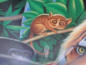 A tetikus lemur