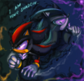 A Shadow Of Shadow - shadow-the-hedgehog photo