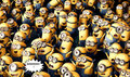 BANANAS! - despicable-me-minions fan art