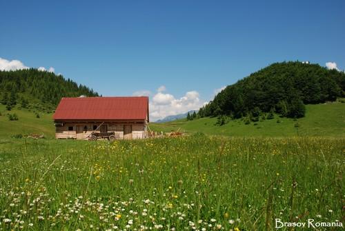 Brasov Carpathians Romania