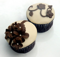 Brown Cupcake - colors photo