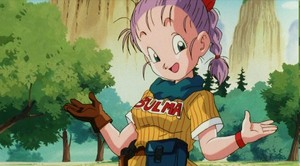 Bulma - Purple Hair