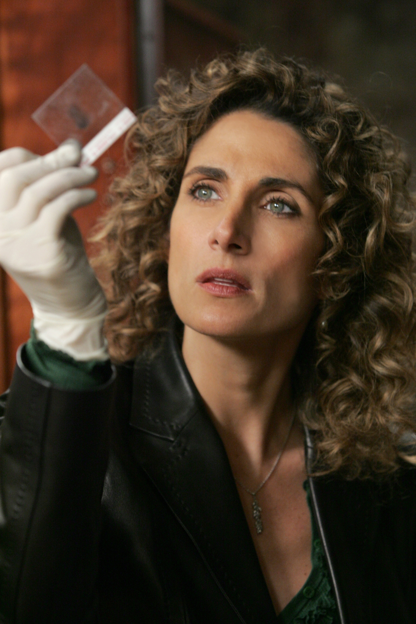 Melina Kanakaredes images CSI : New York HD wallpaper and background ...