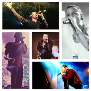 Chester ∞