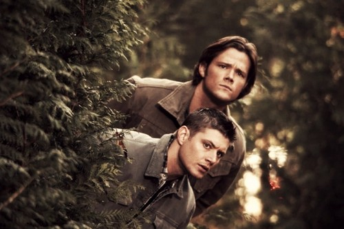 Supernatural images Dean and Sam HD wallpaper and ...