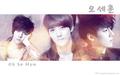 EXO-K - exo-k wallpaper