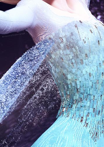 Elsa  - Dress Details