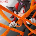 Keep Out - shadow-the-hedgehog photo