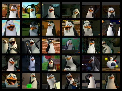 Kowalski is awesome.