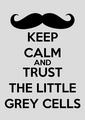 Little Grey Cells - poirot photo