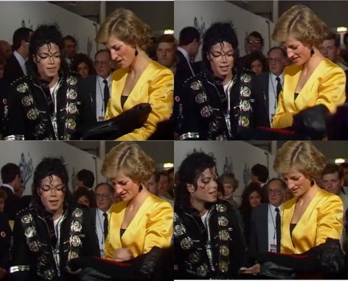 Meeting with Princess Diana