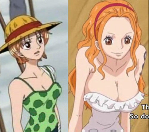 Que des hentai de one piece font le sexe love this