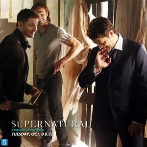 New Season 9 Promo Picture