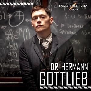 Dr. Hermann Gottlieb