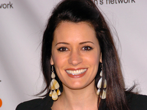 Paget Brewster wallpaper containing a portrait entitled Paget Brewster