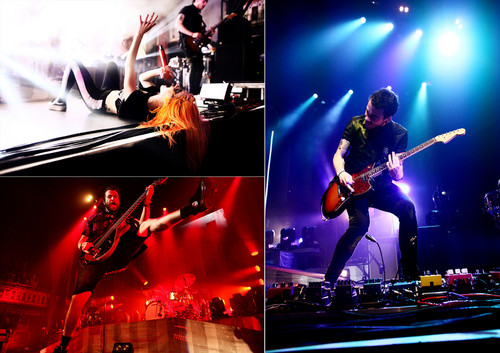Image Gallery Paramore Concert Paramore Tour