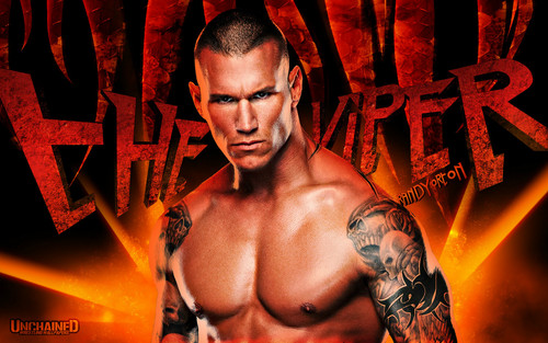WWE wallpaper probably with a hunk titled Randy Orton