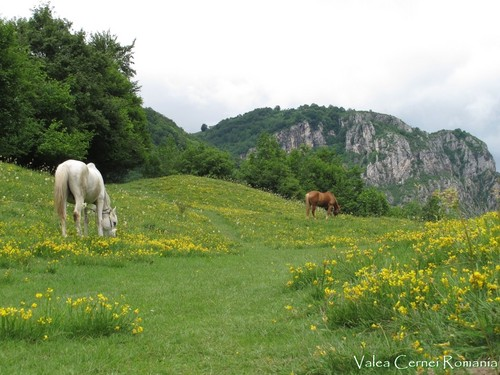 Romania Carpathians mountains landscape eastern Europe