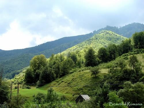 Romania scenery in the Carpathian mountains