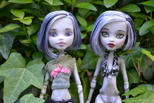 Monster High hình nền titled Simone & Ophelia