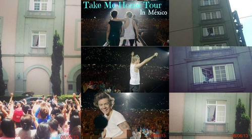 Take Me Home Tour